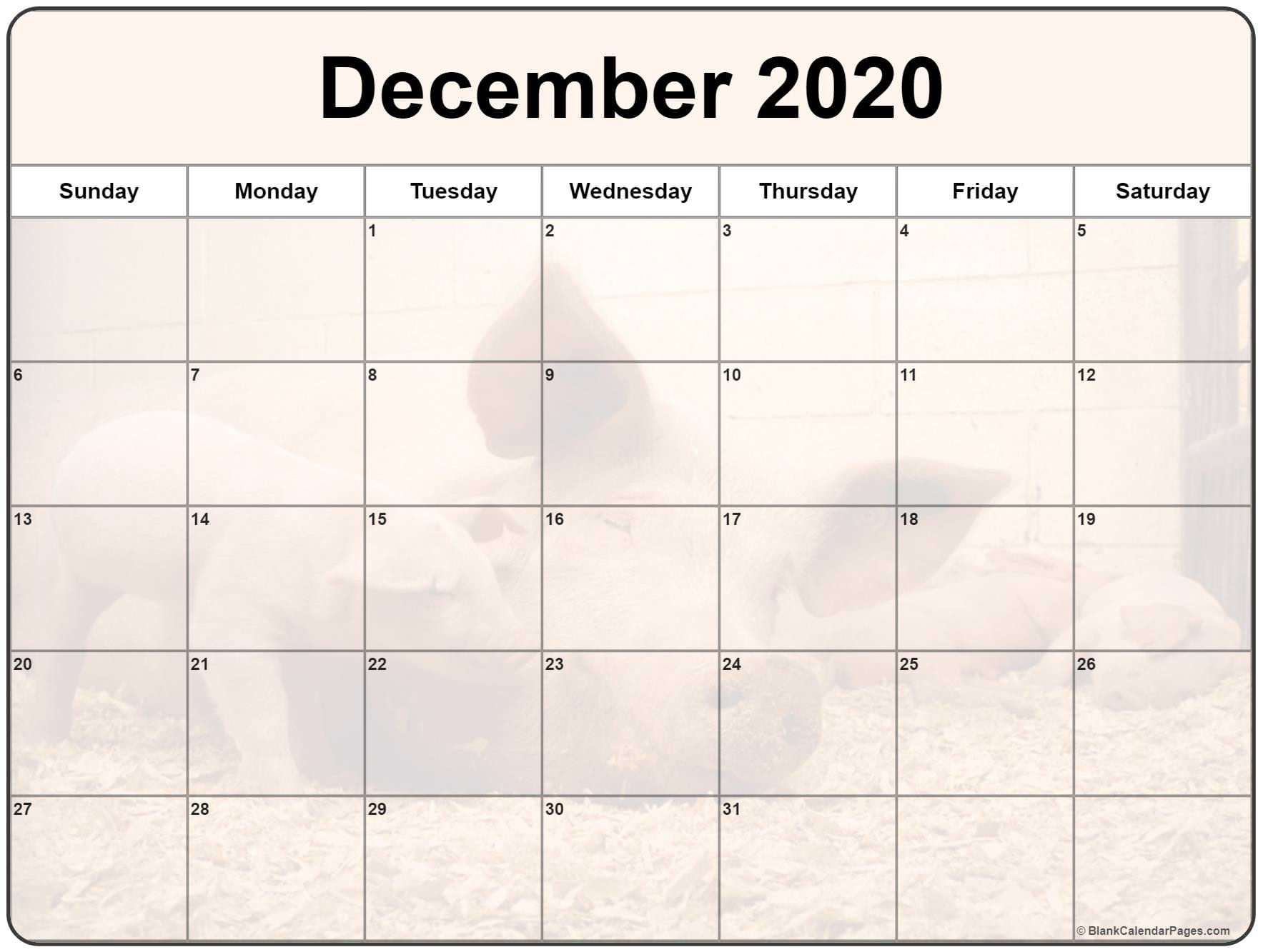 Free Cute Printable Calendars 2020 Collection Of December 2020 Photo Calendars with Image