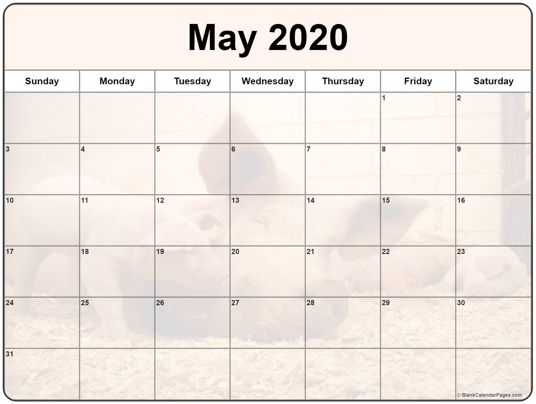 Free Cute Printable Calendars 2020 Collection Of May 2020 Photo Calendars with Image Filters