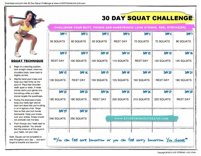 [ULTIMATE] panion to 30 Day Squat Challenge Tips Jan