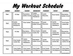 Best 25 Insanity workout schedule ideas on Pinterest