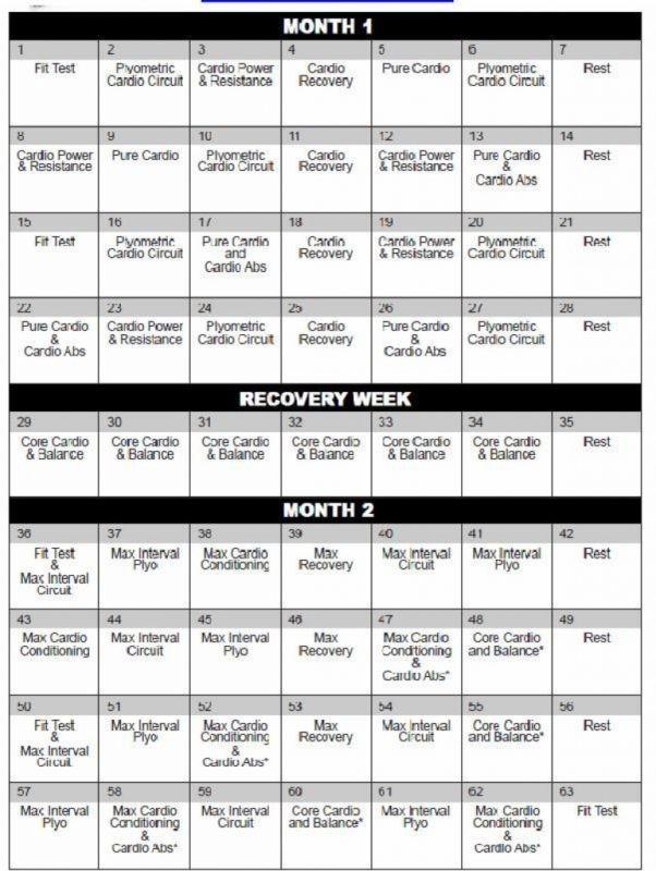 Insanity Workout Free Cardio Abs